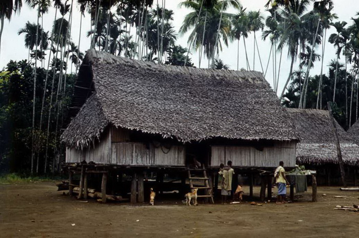 Бонгу традиционное жилище