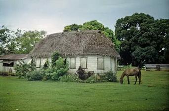 Тонга полинезия